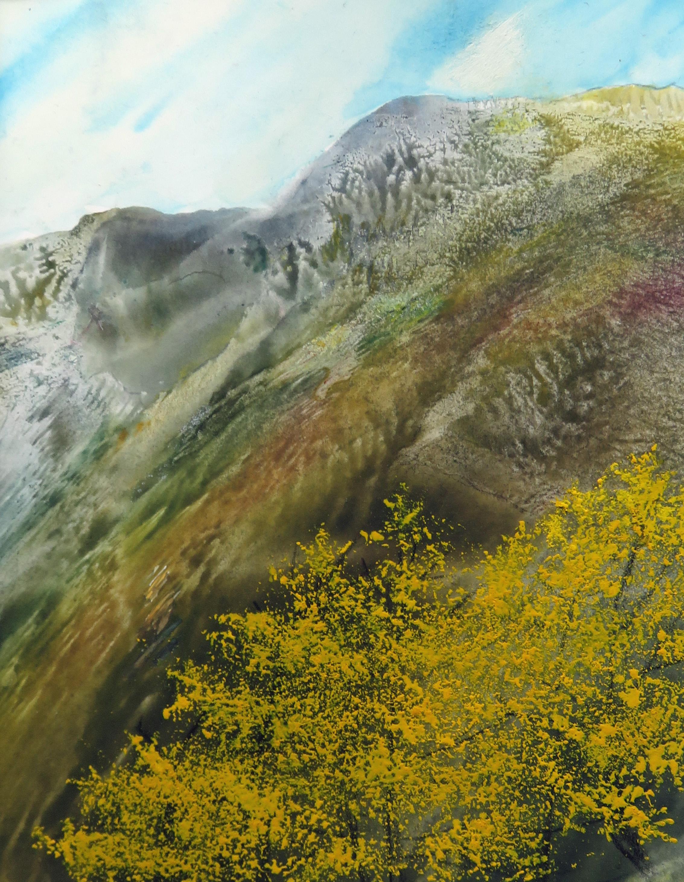 Montagne 10 Mélèzes (1)
